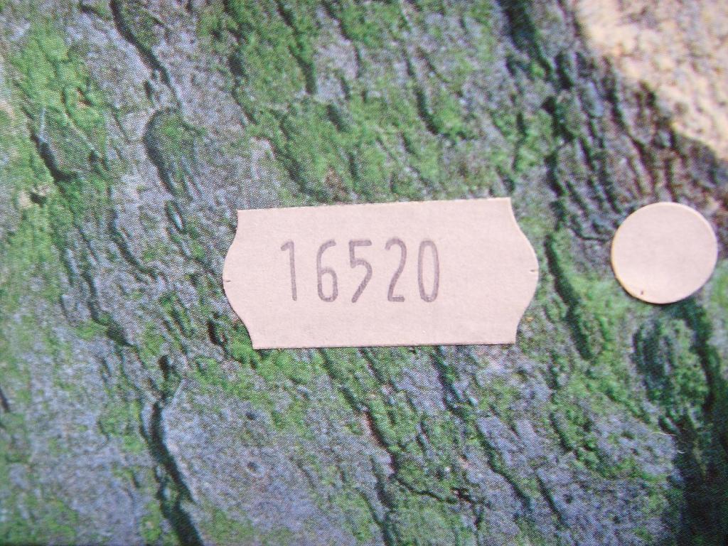 ROLEX DAYTONA ZENITH REF 16520 DOUBLE BOX & BOOKLET - Imagen 2